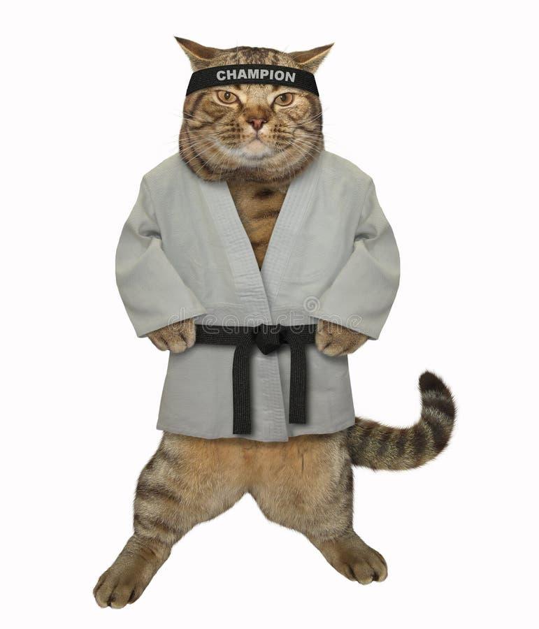 Karaté do gato em um quimono 2 foto de stock