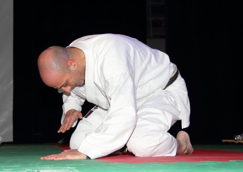Karate έκθεση: το κύριο τόξο ` s στοκ εικόνα