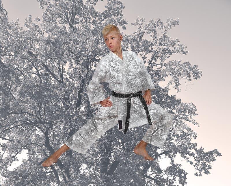 Karate κατάρτισης αγοριών στοκ εικόνες