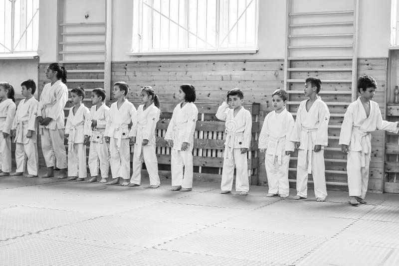 Karate κατάρτιση στοκ φωτογραφίες με δικαίωμα ελεύθερης χρήσης