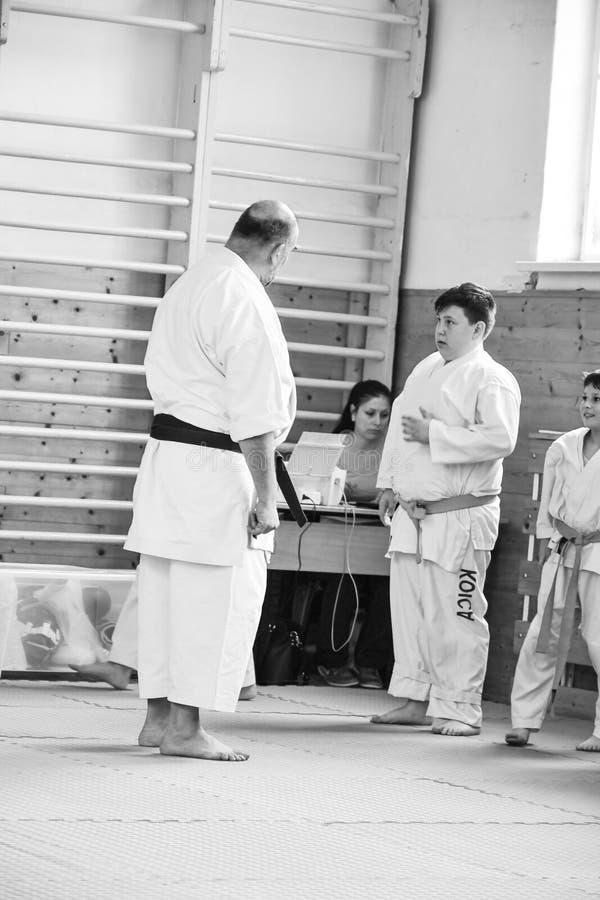 Karate κατάρτιση στοκ εικόνα