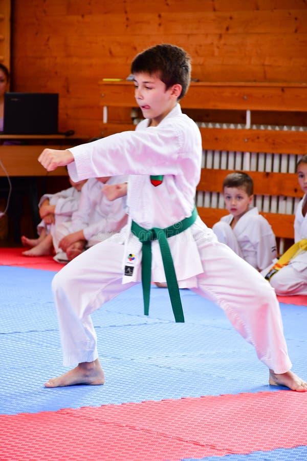 Karate κατάρτιση στοκ φωτογραφία με δικαίωμα ελεύθερης χρήσης