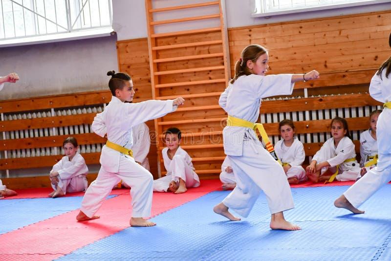 Karate κατάρτιση στοκ εικόνα με δικαίωμα ελεύθερης χρήσης