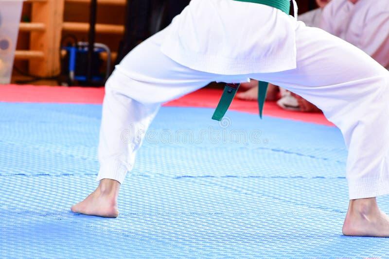 Karate κατάρτιση στοκ εικόνες με δικαίωμα ελεύθερης χρήσης