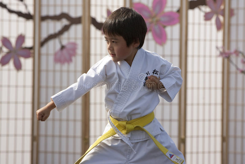 karate κατσίκι στοκ εικόνα