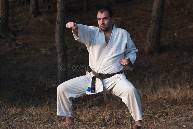 karate κύριος στοκ φωτογραφίες