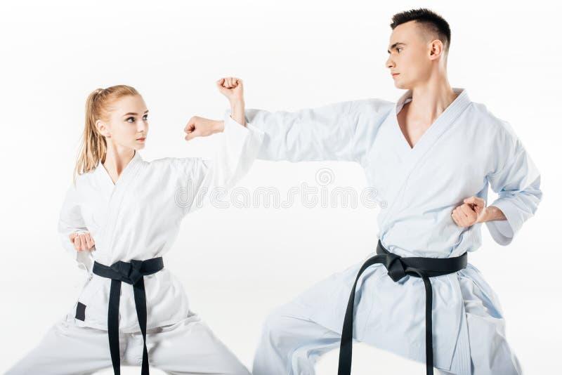 karate μαχητές που εκπαιδεύουν το φραγμό που απομονώνεται στοκ εικόνα