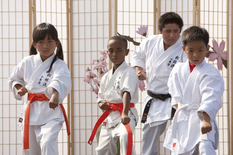 karate μορφής στοκ φωτογραφία με δικαίωμα ελεύθερης χρήσης