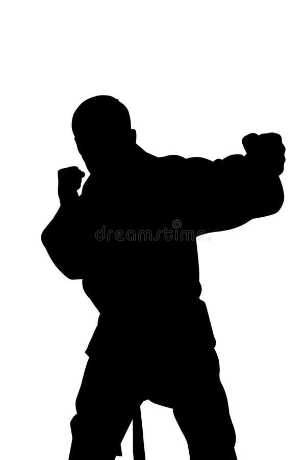 karate σκιαγραφία ατόμων πολεμικών τεχνών στοκ φωτογραφία