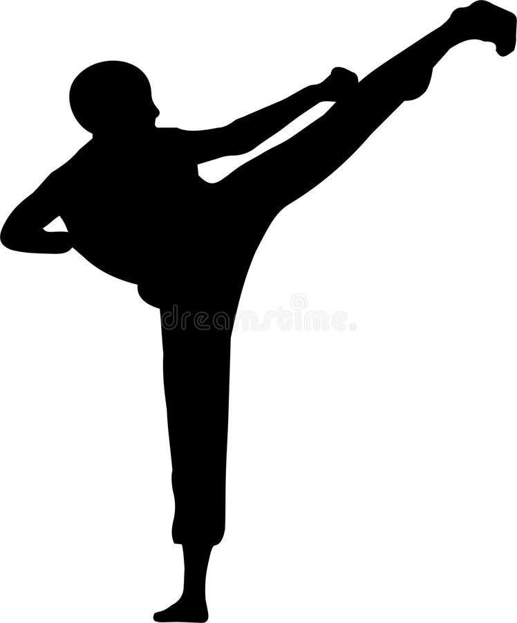 karate 2 vektor illustrationer