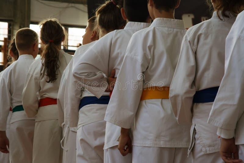 karate στοκ εικόνες