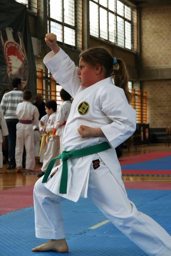 Karate imágenes de archivo libres de regalías