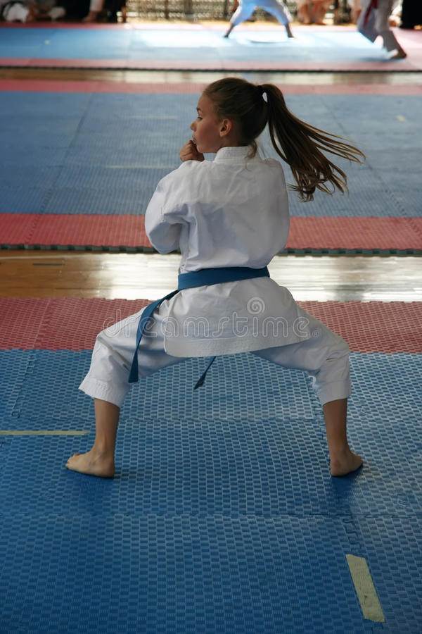 Free Karate Stock Images - 25647384