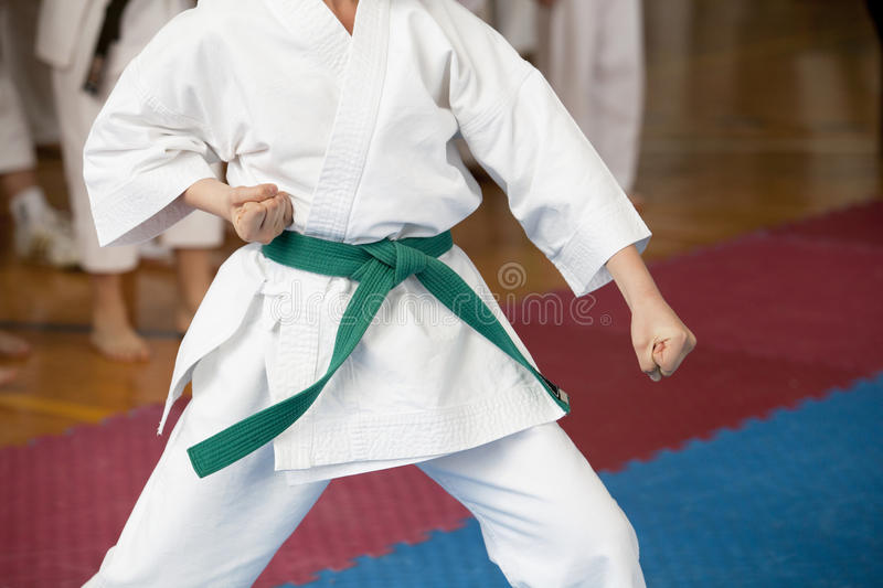 Karate royaltyfria bilder
