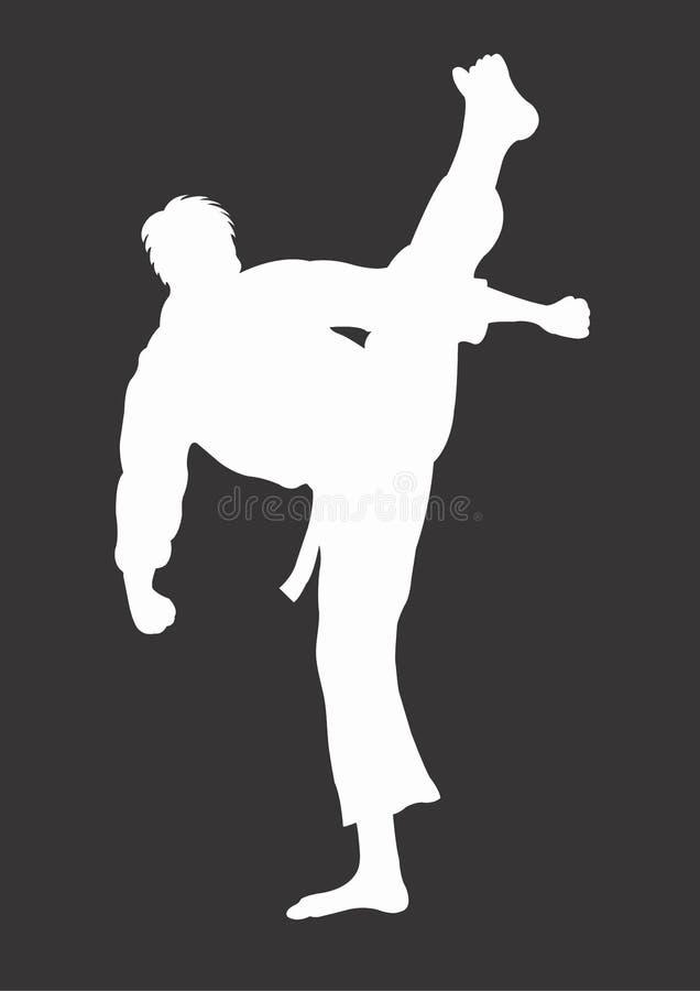 karate διανυσματική απεικόνιση