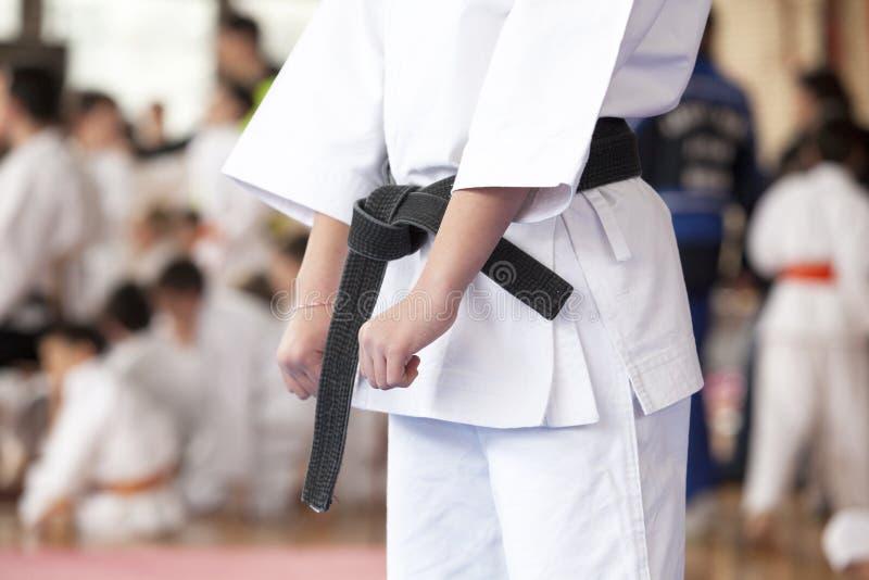 Karate στοκ φωτογραφία