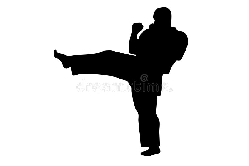 karate royaltyfri illustrationer