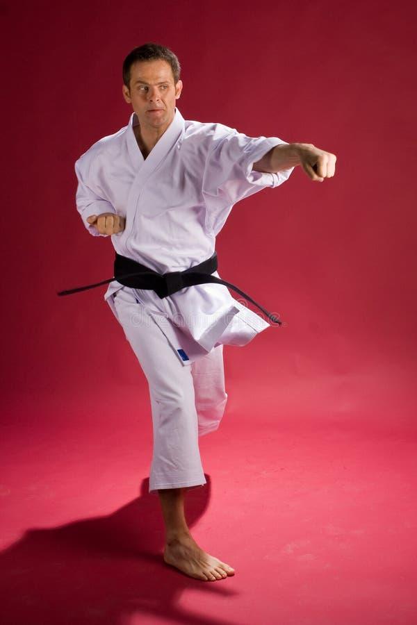 Karate. Man in Karate Gi (uniform) striking a pose royalty free stock photo