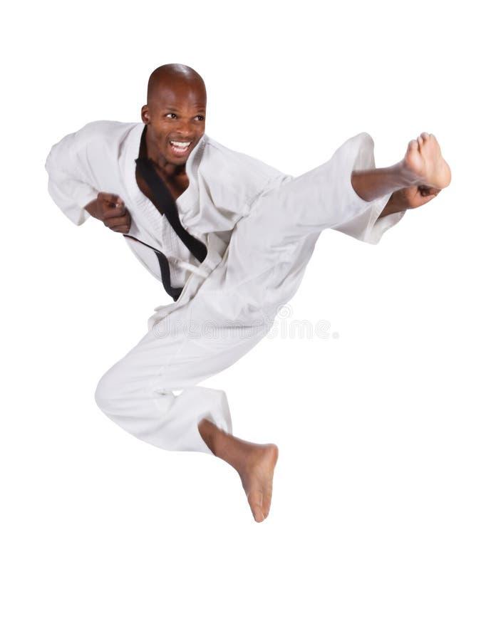 Karate stock fotografie