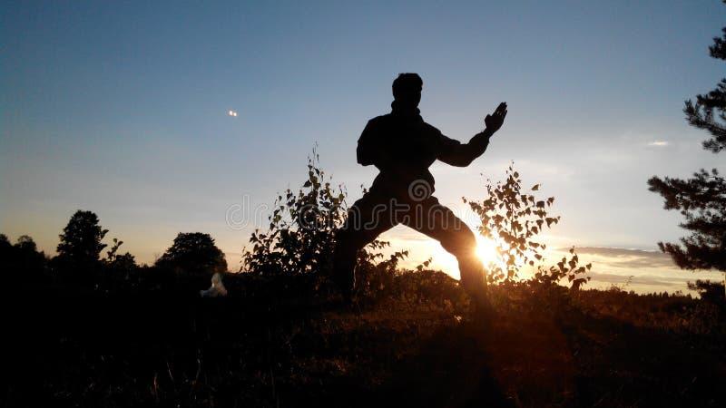 karate royaltyfria bilder
