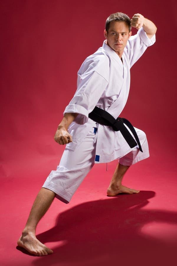 Karate Black Belt. Man wearing Gi (Karate uniform) and black belt strikes a Karate pose stock image