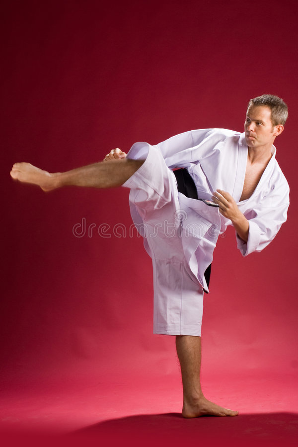 Karate black belt kicking royalty free stock images