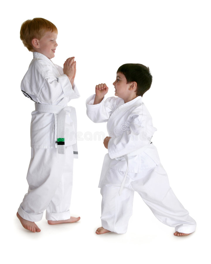 Free Karate Buddies Royalty Free Stock Photography - 3336797
