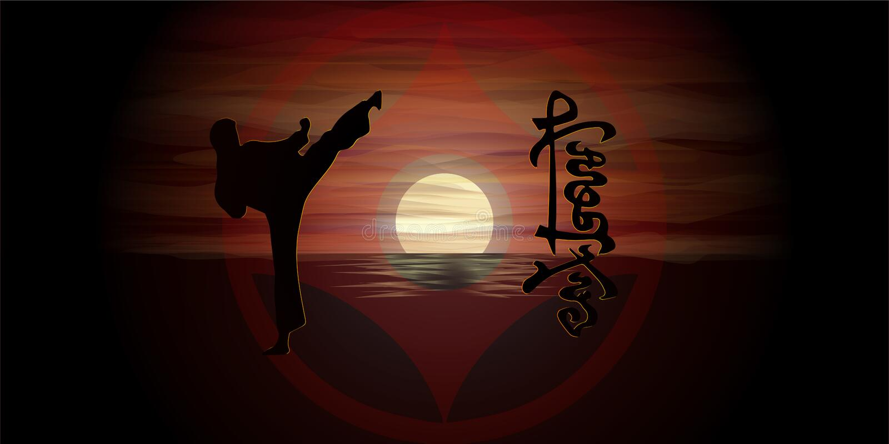 Karate de Kyokushinkai imagenes de archivo