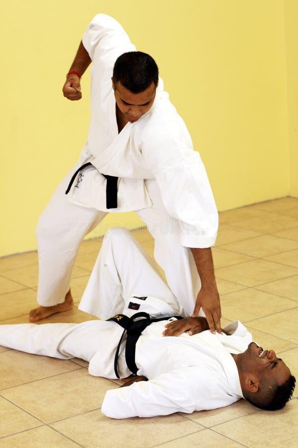 Karate de la lucha imagenes de archivo
