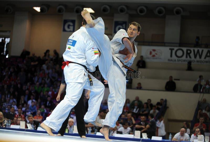 Karate European Championship royalty free stock photo