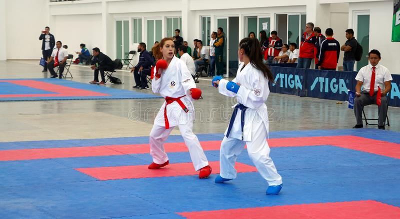 Karate female fighters royalty free stock photo