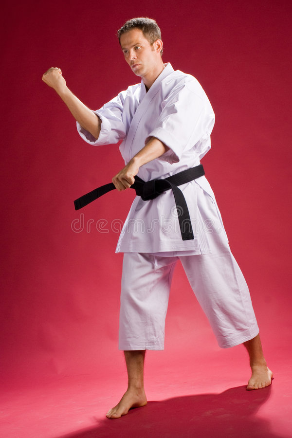 Karate Fight. A Model in a Karate Kimono with black belt(level) on a red background royalty free stock photo