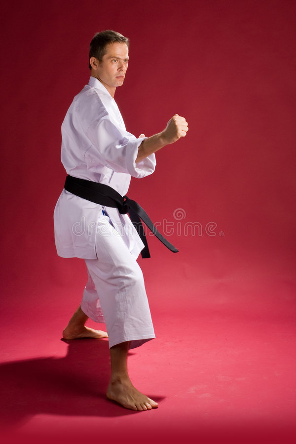 Karate Fighter. A Model in a Karate Kimono with black belt(level) in a punching pose, on a red background stock photo