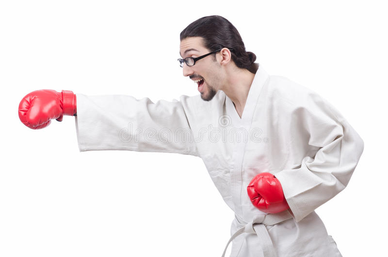 Download Karate Fighter Isolated On  White Stock Photo - Image: 24759288