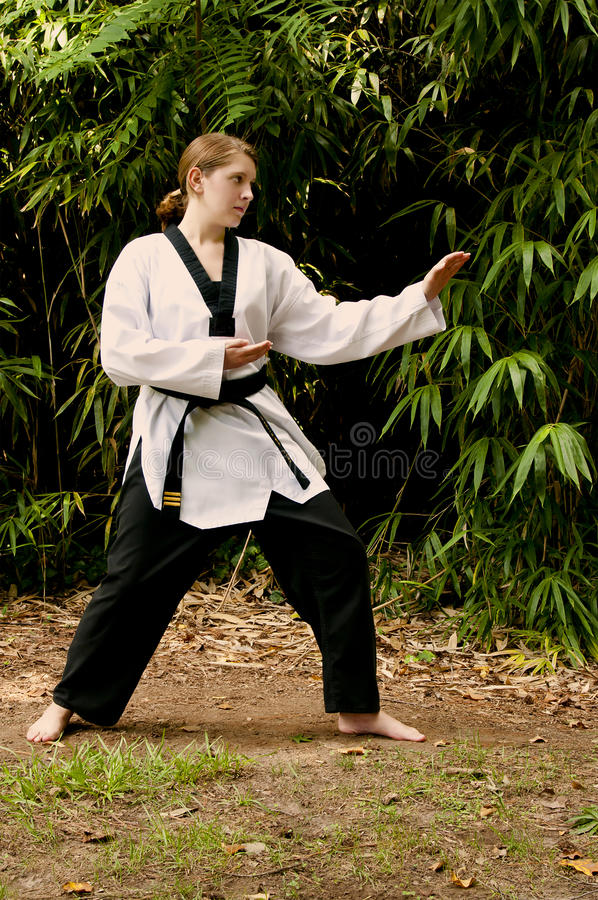 Download Karate Girl stock image. Image of defense, activity, action - 16142621