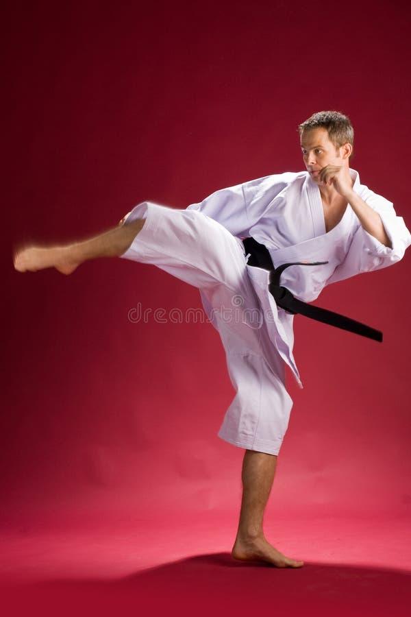 Karate kick by black belt. Adult male karate black belt wearing white kimono kicking, red background stock photography