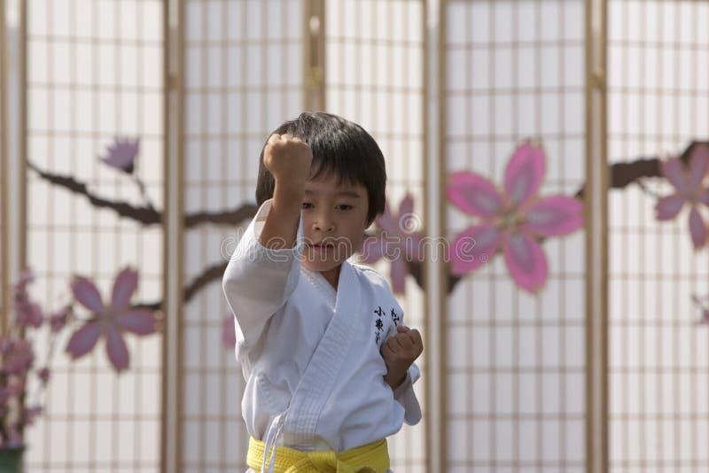 Karate Kid immagine stock