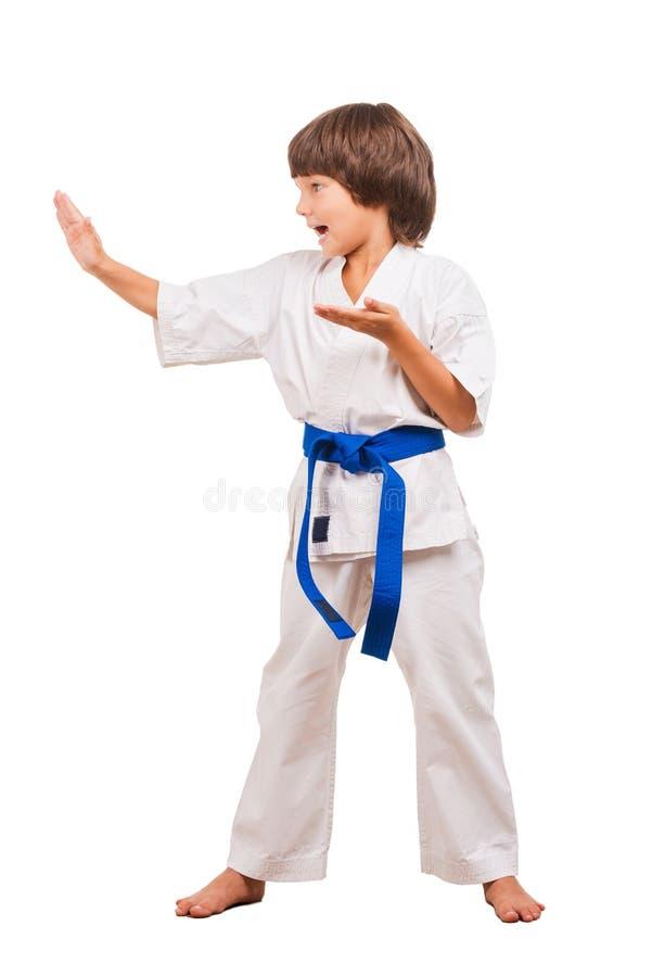 Download Karate Kid foto de archivo. Imagen de concentración, coreografía - 44851466