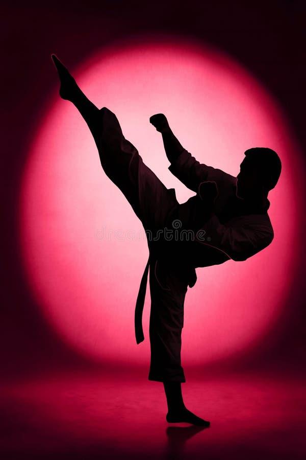 Karate kopnięcie fotografia royalty free