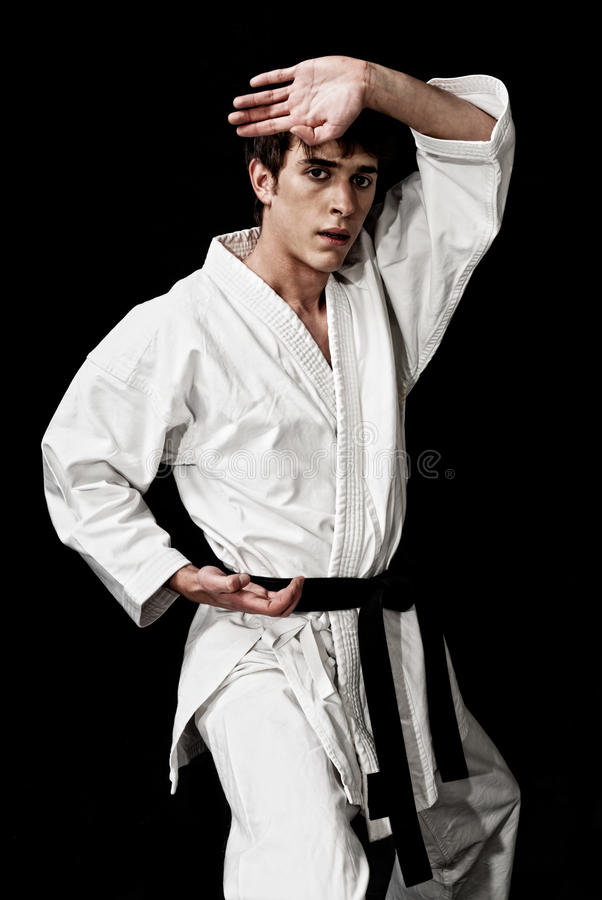 Karate male fighter young high contrast on black stock image