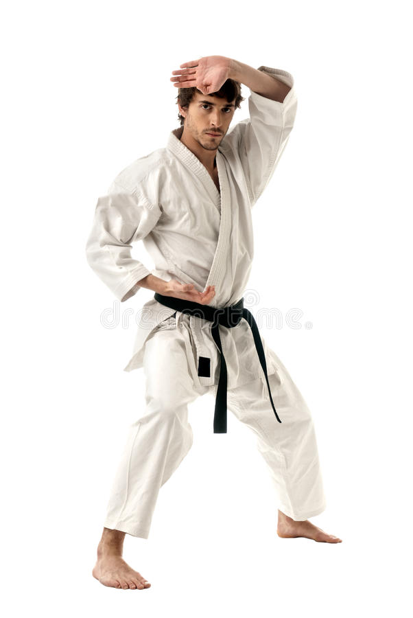 Karate male fighter young isolated on white. Background royalty free stock photo