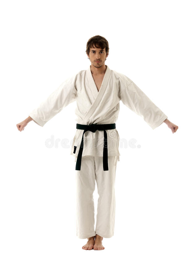 Karate male fighter young isolated on white back royalty free stock image