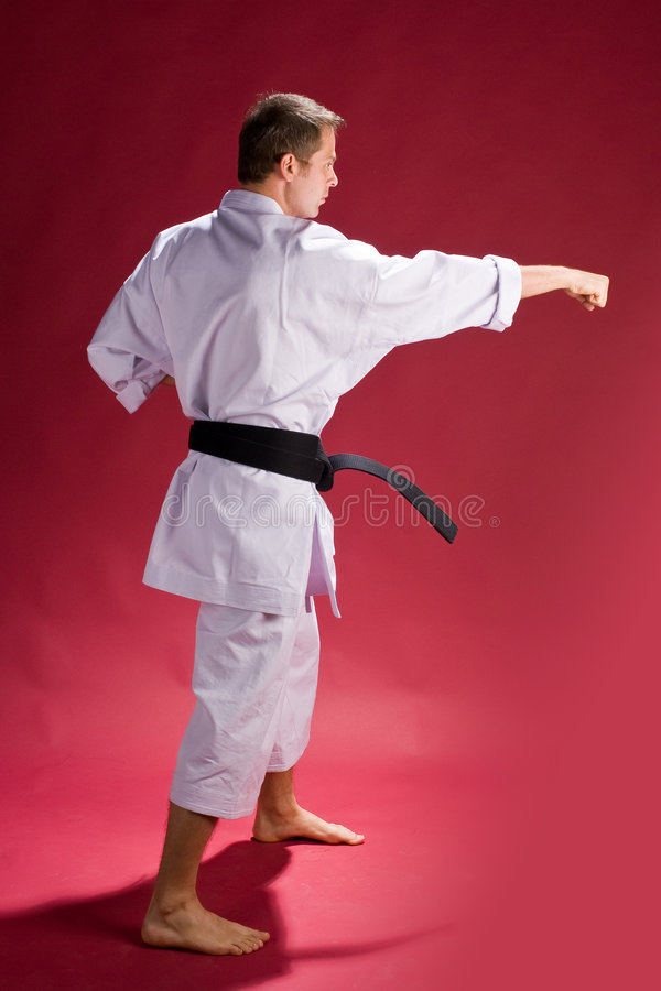 Karate male instructor. A male karate student or instructor posing royalty free stock images