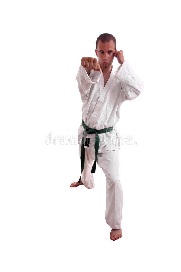 Karate man royalty free stock photo