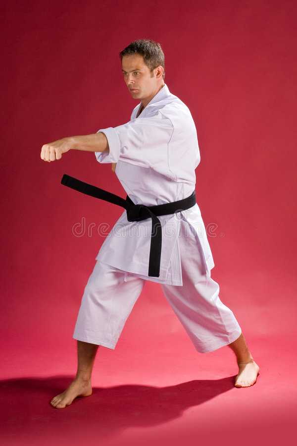 Karate man with black belt. A man with a black belt in karate posing royalty free stock photos