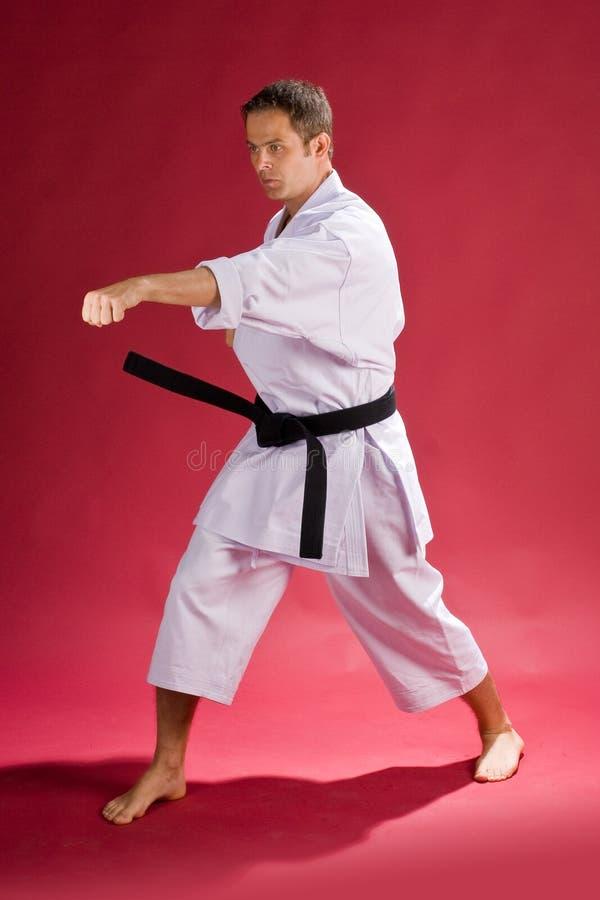 Karate man with black belt royalty free stock photos