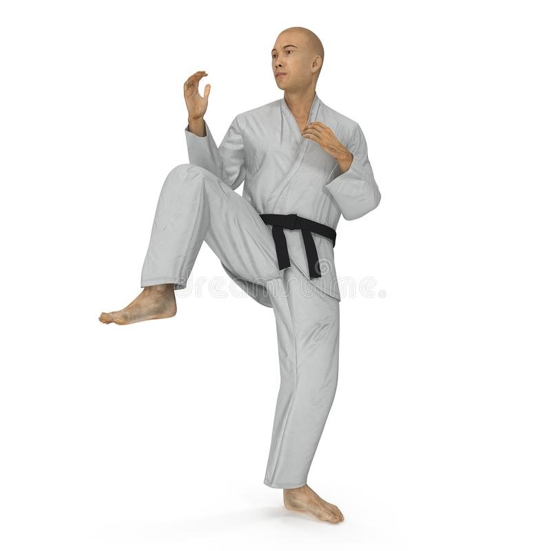 Karate man in a kimono fighting pose on white. 3D illustration vector illustration