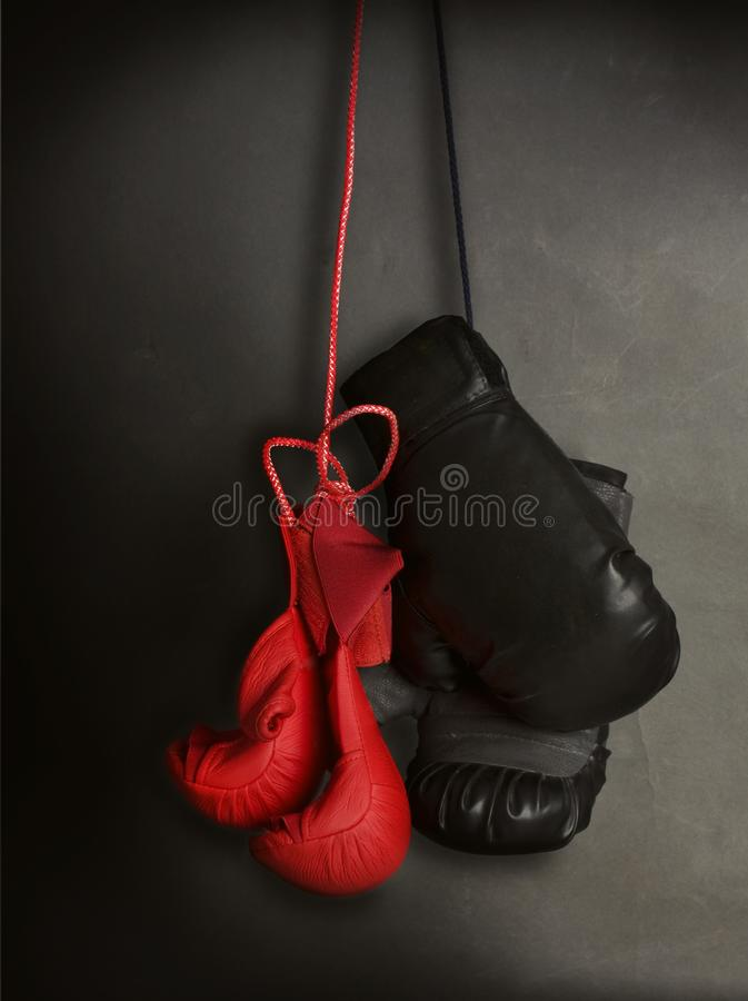 Karate- och boxninghandskar royaltyfria bilder