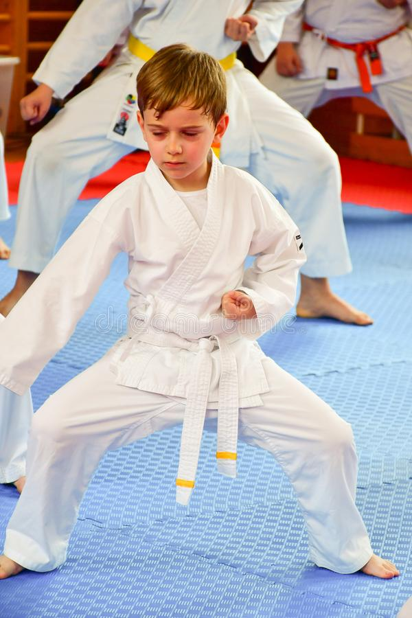 Karate opleiding royalty-vrije stock foto's