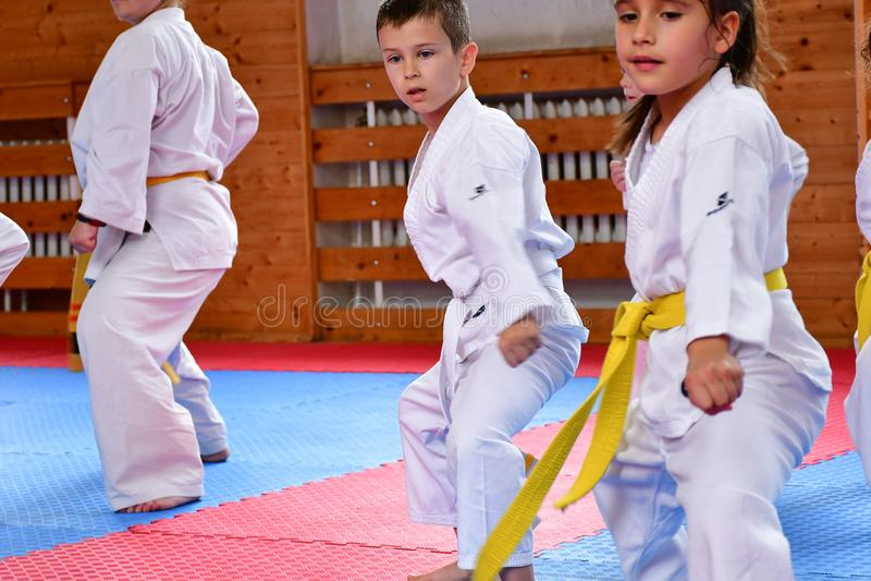 Karate opleiding royalty-vrije stock foto